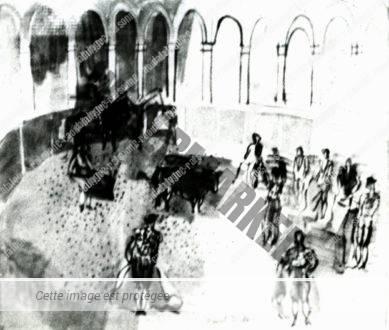 Scène De Corrida