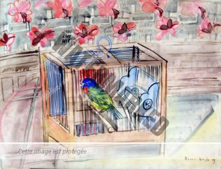 La Cage D'oiseaux